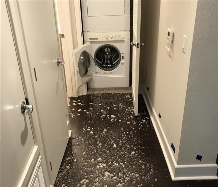 Toilet overflow in a Condo in Walnut Creek Before