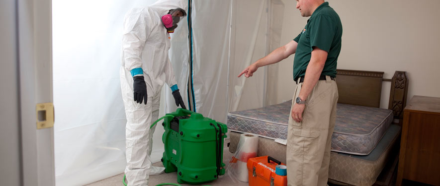 Walnut Creek, CA mold removal process